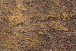 Old Plaster Stucco Texture 01 by goodtextures