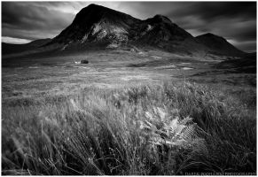 Buachaille Etive Mor by MindShelves