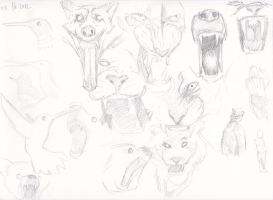 gestures by apcMurray