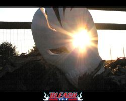BLEACH- Mask v.1-3 by danielledemartini