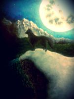 Lone Wolf by RaccoonMonster