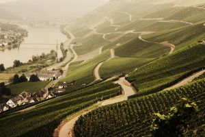 Mosel by gayname
