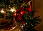 Christmas decors by jcphotos