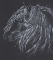 Black horse in white charcoal 2 by BugABooStreak