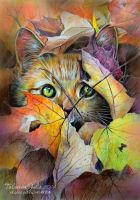 Autumn cat by Knesya27