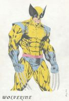 Wolverine by Xeraton