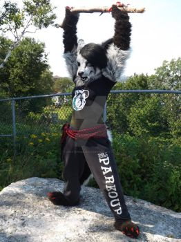 Halifax furmeet 2015 #2 by Creativeimaginez