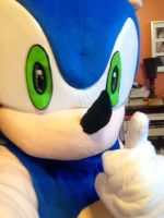Way Past Cool- My Sonic Costume by FiveNightsAtFoxys