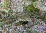 Giant Crab 3D Anaglyph by yellowishhaze