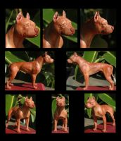 APBT Sculpture, Painted by rgyoung