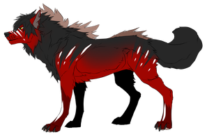 Wolf Cash Adopt (CLOSED) by xKoday