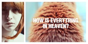 Drop Dead by ElifKarakoc