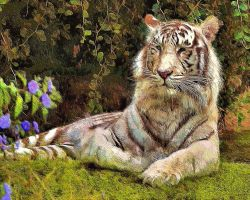 The Tiger by montag451
