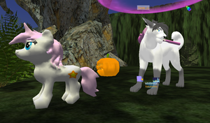 Last Moon (3D Animal Game) Pony Model by RakshaWw