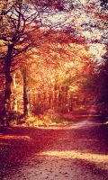 Autumn Fire by hchic4life