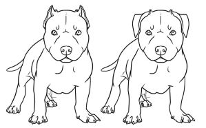 Free pit bull pup lineart by Gutter-Mutt