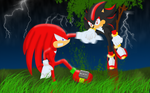 Knuckles vs Shadow by HellButterfly22
