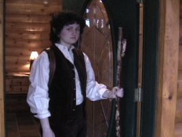 Frodo at Bag End by ThreeRingCinema