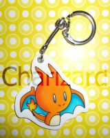 example Charizard by I-Am-Bleu