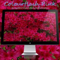 Colourflash Pink by webcruiser
