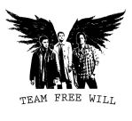 Team Free Will by stormthief19
