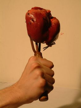 heart on a stick by neb8stock