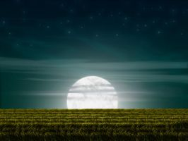 Fields Under Moon by IshqAatish