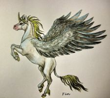 winged unicorn by wildelbenreiter