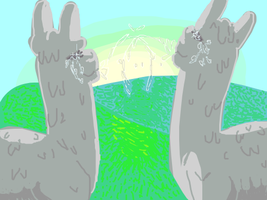 2 Lamas Watching The Sunset And Spitting by danceswithzerg