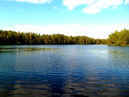 Finnish Lake (2) by gothic90