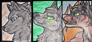ACEO Cards - Raffle Winners by xXAkilaXx
