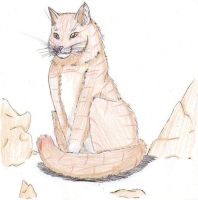 Brambleclaw - Warrior Cats by firefoxessmoon