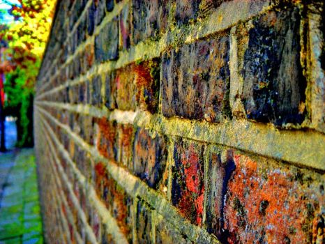 On the wall by boxersphoto