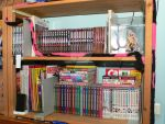 My Manga Collection at Feb. 10 by Alf-arobase