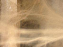 texture-cobweb by KasStock