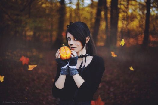 D556 - Halloween by miobi
