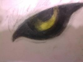 The Eye of the Wolf by chloerosewolf