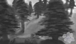Evergreen forest by ShadowQuest2000