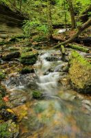 Short Springs (Fall 2012) by SparkVillage