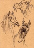 The Lich-Horses by caramitten