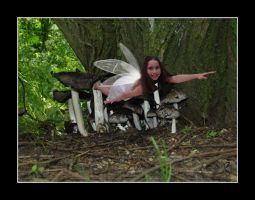 Toadstool Fairy by BFG