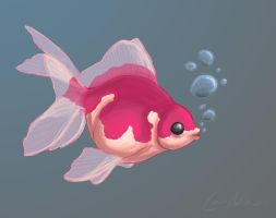 Fishie by princekyo4ever