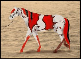 Halter- CH Apako by Everland-Stables