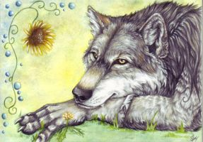 Werwolf Summer by SteelC