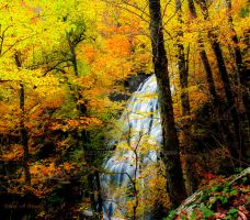 Crabtree Falls by milesmoody