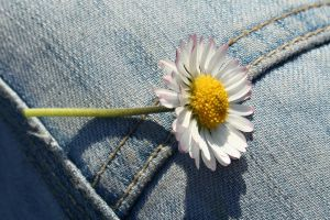 Denim and Daisies I by JinxedKitten