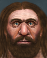 Neanderthal face study II by Mihin89