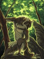 Forest Werewolf by Atan