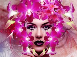 The Orchid Pink Lady by annemaria48