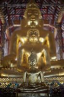 Trance Buddha - Chiang Mai Tempel by LoveYourPath